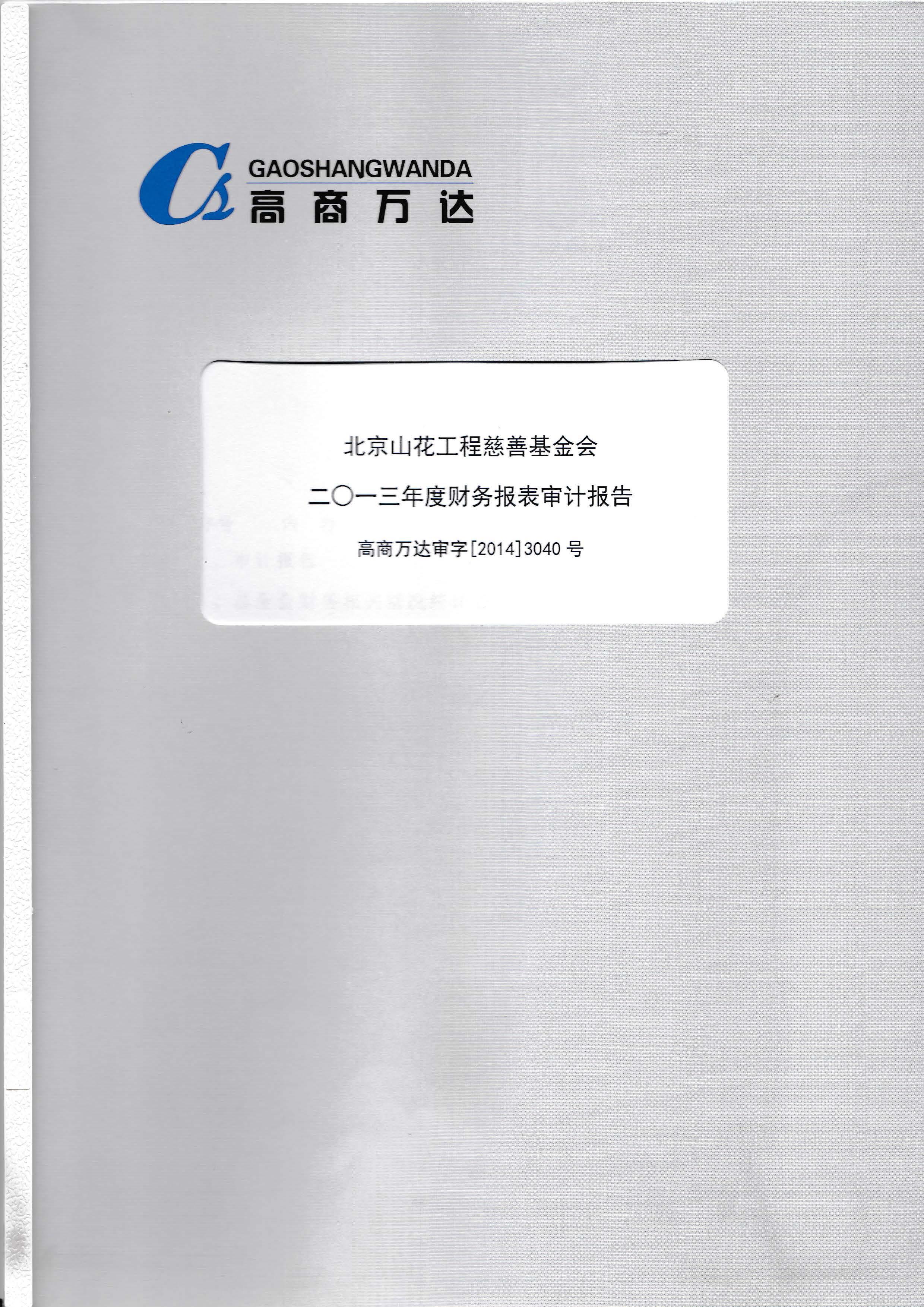 2013审计报告_页面_01