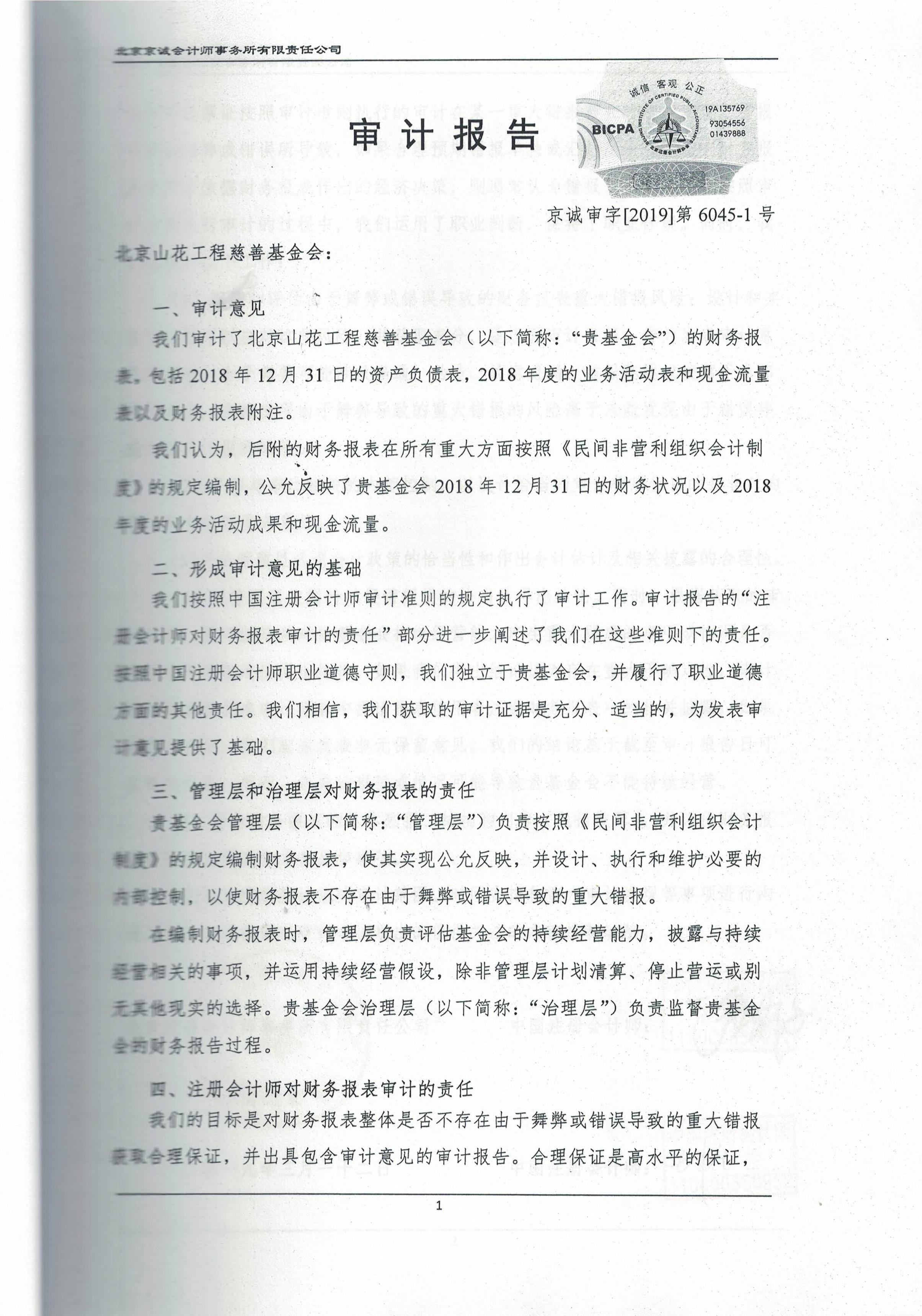 2018审计报告_页面_03