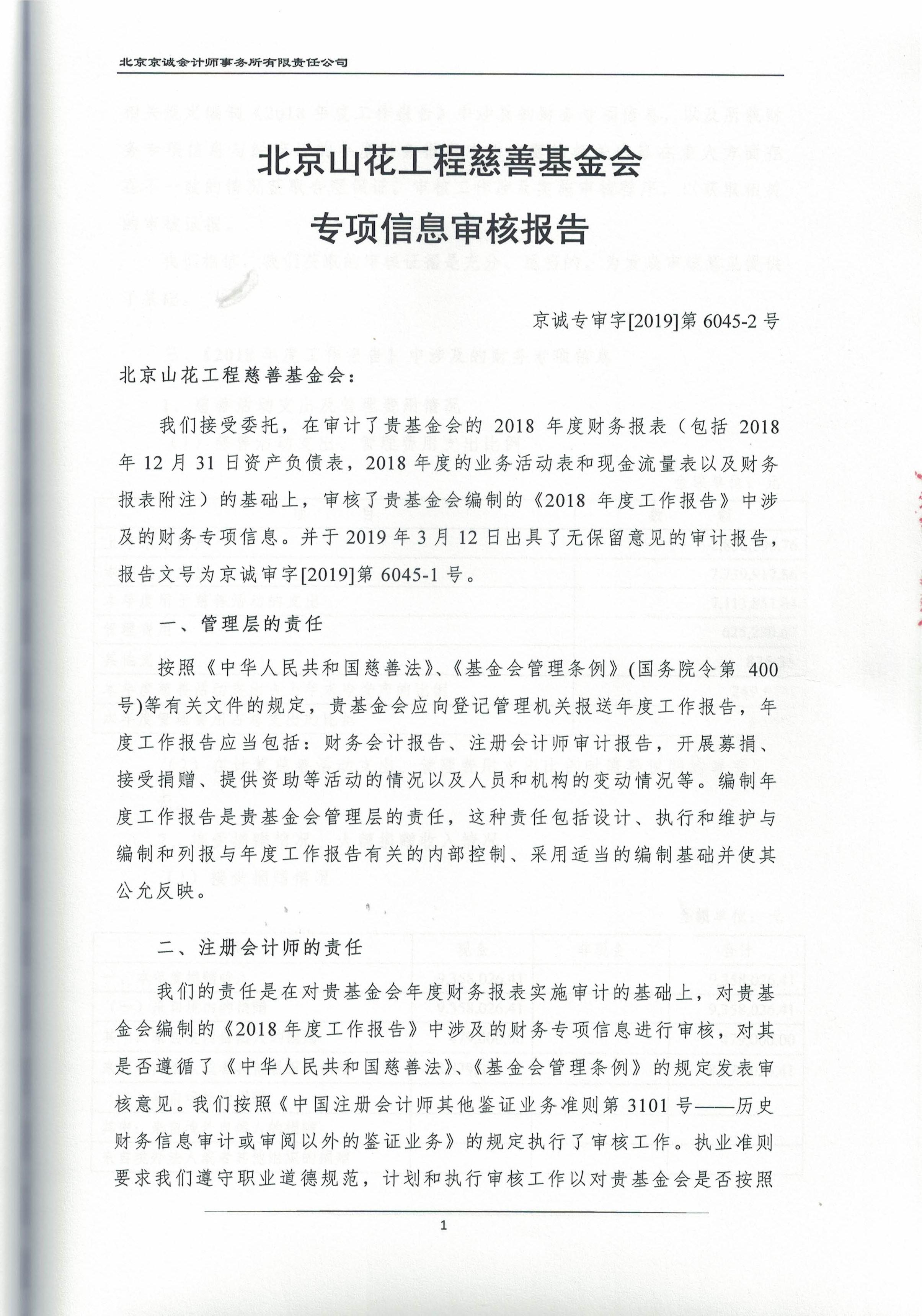 2018审计报告_页面_21